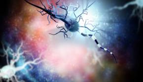 affected-nerve-cells