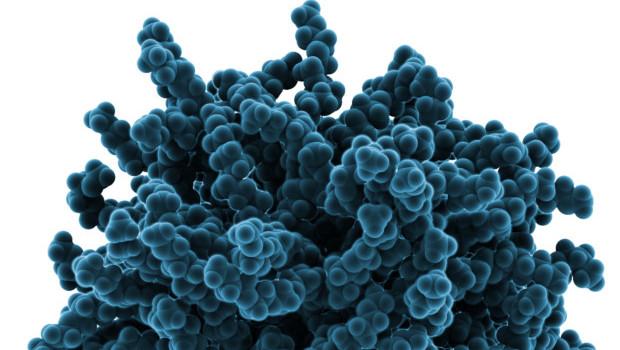 spago-nanomedical