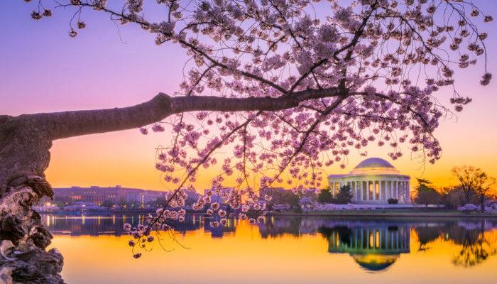 11-12 April 2018: SALSS Goes to Washington
