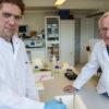Spying on malaria parasites
